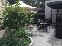 Jardin Tan, South Yarra