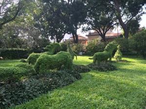 Saigon Zoo and Botanical Gardens, HCMC - Vietnam Culinary Discovery