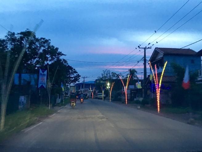 The avenue of neon palm trees - Negombo, Sri Lanka