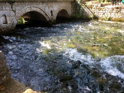 St Naum, Lake Ohrid - Real Food Adventure Macedonia and Montenegro