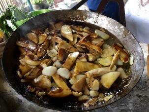 Mushrooms from the Radika Valley - Real Food Adventure Macedonia and Montenegro